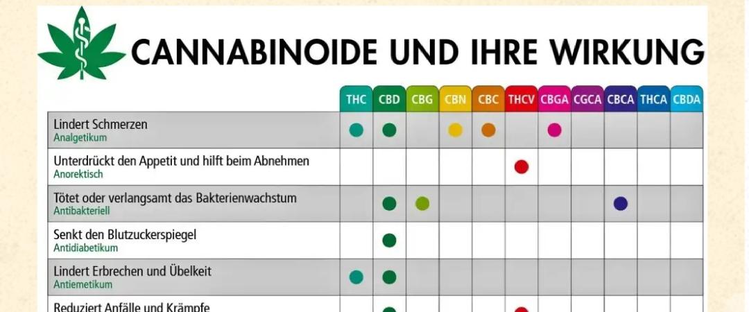 Cannabinoide und ihre Wirkung